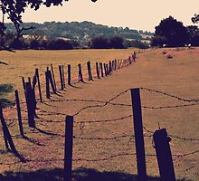 Vintage Fence and Field by Liam O'Reilly