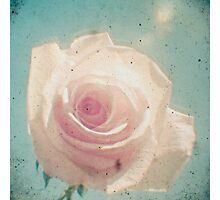 A Rose by Any Other Name Photographic Print