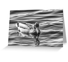 Unquiet water Greeting Card