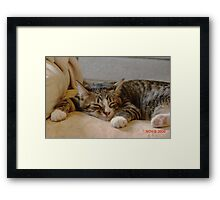 Tuckered Out Framed Print