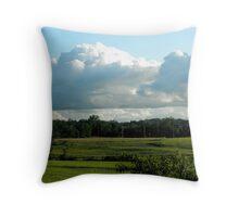 Spring Countryside Throw Pillow