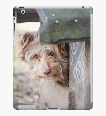 bad dog head jut out of kennel  iPad Case/Skin