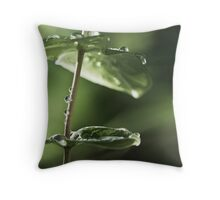 branes Throw Pillow