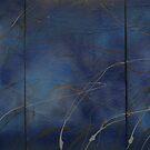 Borodin String Quartet in D major (Nocturne) by mare