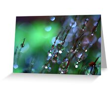 Green Mist Greeting Card