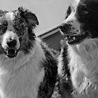 Good Boys! by John  Kapusta