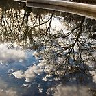 conservatory water reflection by marianne troia