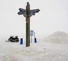a new parking spot by Cheryl Dunning