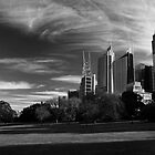 Sydney Botanical Garden & Skyline Monochrome by MiImages