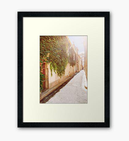 Sunny grape street Framed Print