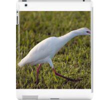 Egret on the Hunt iPad Case/Skin