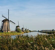 The windmills of Kinderdijk by Carolyn Eaton