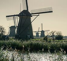 Windmills by Carolyn Eaton