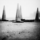 Cones by ginkgo
