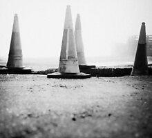Cones by ginkgo
