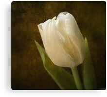 Tulip Reminiscence Canvas Print