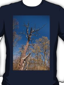 Old dead trunk decayed tree T-Shirt
