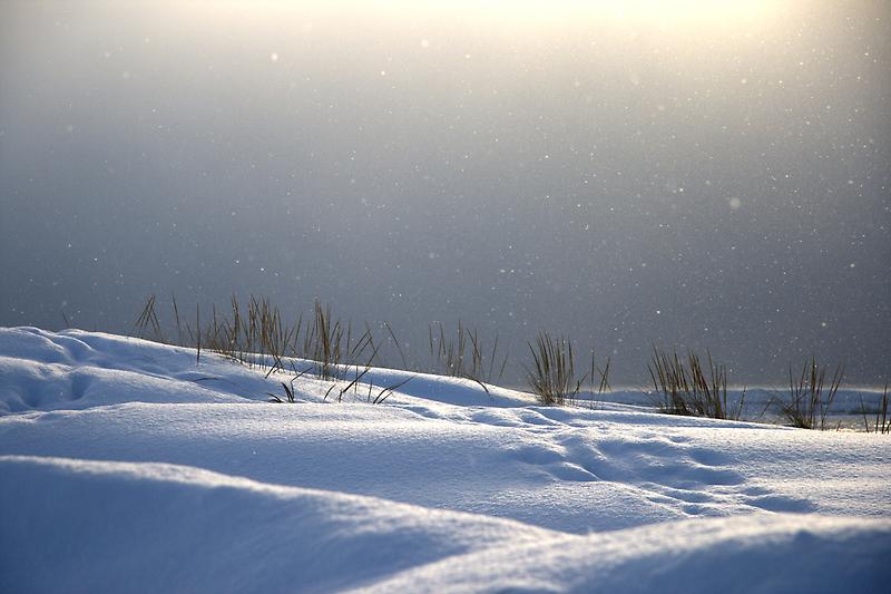 Snowy Sunset by Vicki Oseland