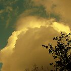 Cloud With a Silver Lining by DottieDees