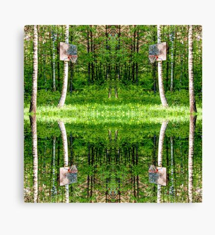 Basketball Forest Court Reflection 1 Canvas Print