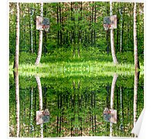 Basketball Forest Court Reflection 1 Poster