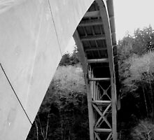 Devils Elbow Overpass by Brandon Taylor