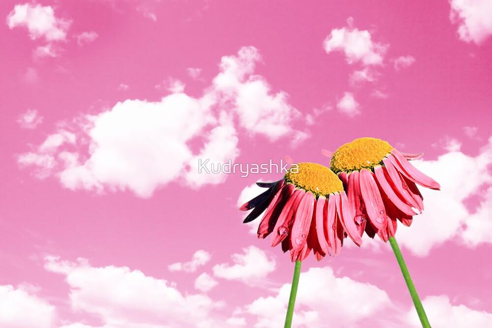 Camomiles beautiful on pink sky by Kudryashka