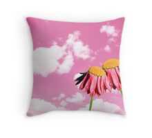 Camomiles beautiful on pink sky Throw Pillow