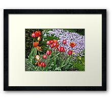 Spring Flowers of Many Colours Framed Print
