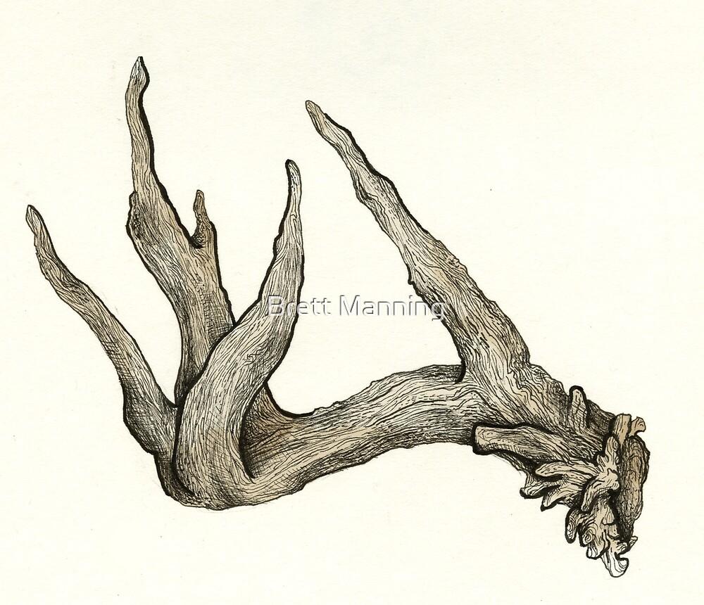 Antler Hand by Brett Manning