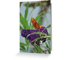 Purple Plains Greeting Card