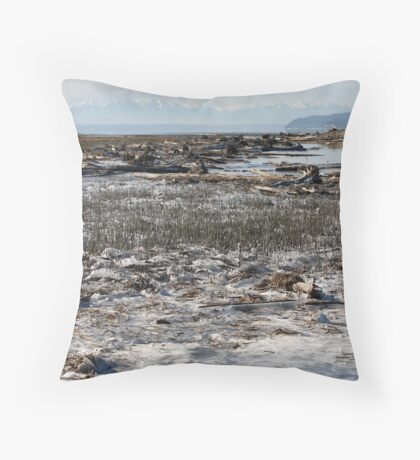 Cold Day Throw Pillow