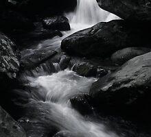 Smoky Mountain Stream by mklue