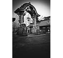 Elephant Gate Photographic Print