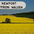 Yellow English Field by Christopher Dunn