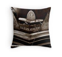 Sleeping Plymouth Throw Pillow