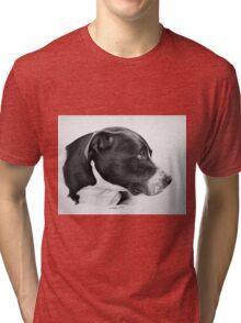 """""""Compassionate Gaze"""" - Pit Bull mix Portrait Tri-blend T-Shirt"""