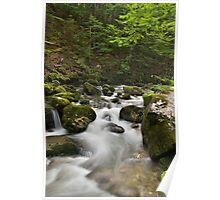 Cascading water in Valserine river Poster