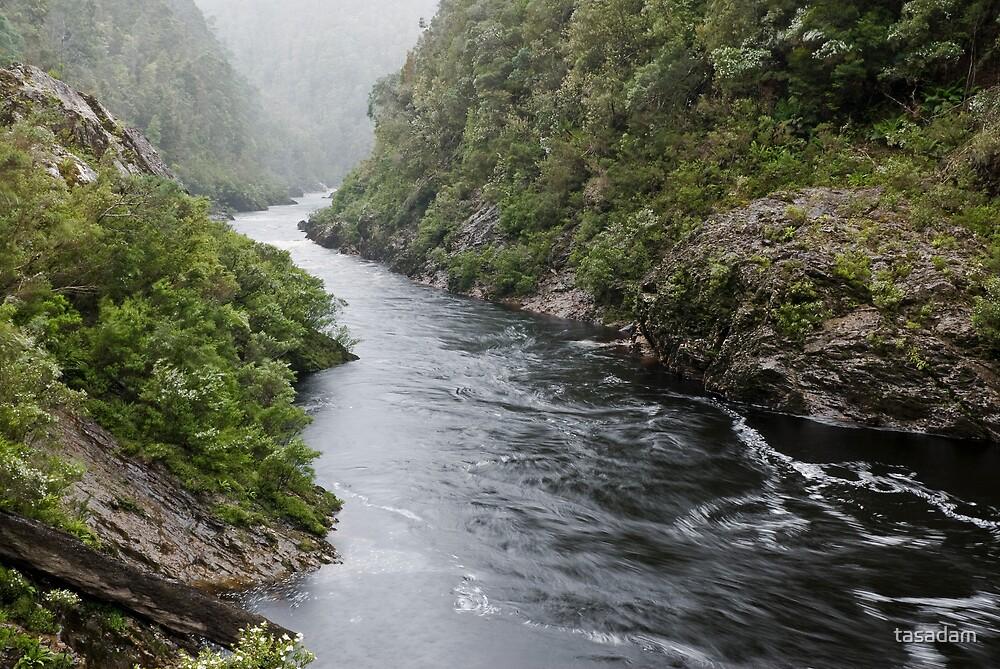 Franklin River in misty rain by tasadam