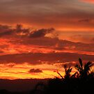 Summer Sunset by Ben Kelly