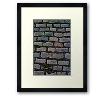 ROCK PATH Framed Print