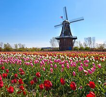 Wooden Windmill in Holland Michigan by Craig Sterken