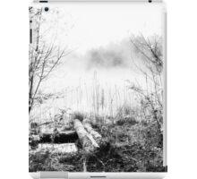 Natural ice fog  iPad Case/Skin