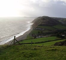 BRANSCOMBE by brucemlong