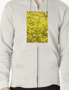 Wild roses prickles on twig T-Shirt