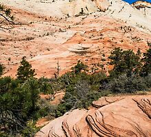 Zion - 2-1 by BGSPhoto