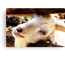 Let me go I am goat Canvas Print