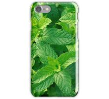 Peppermint herb iPhone Case/Skin