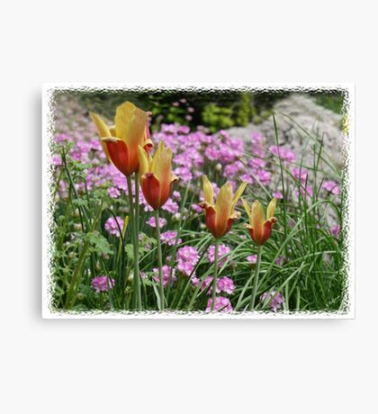 Spring Miniatures Canvas Print