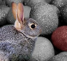 BUNNY AND EASER EGGS..THE ONE THAT CAUGHT MY EYE by ✿✿ Bonita ✿✿ ђєℓℓσ